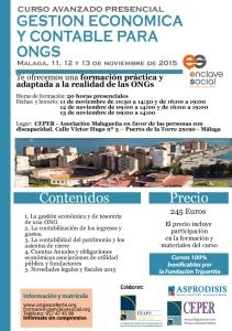 Curso de Experto en Gestión Económica y Contable para ONGs Malaga Noviembre2015