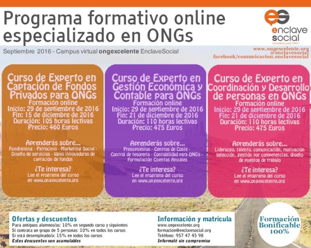 Flyer Experto en Gestión de ONGs Septiembre16