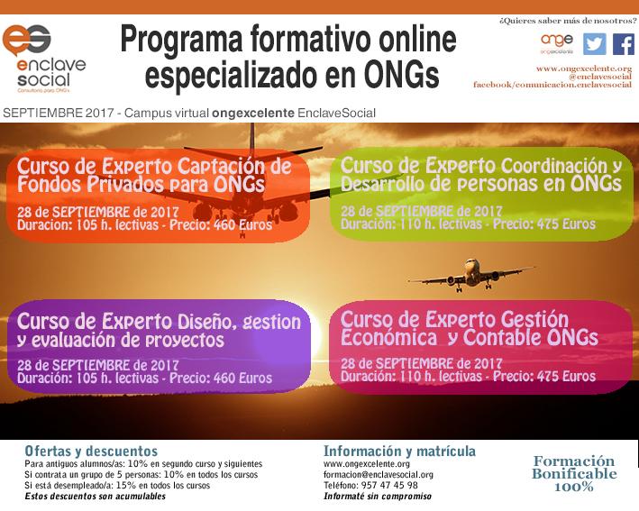 Flyer Experto en Gestión de ONGs Septiembre17